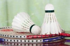 Fjäderbollar och badmintonracket Royaltyfri Foto