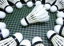 Fjäderbollar på en badmintonracket Royaltyfri Foto