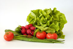 fjädergrönsaker Arkivfoto