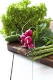 fjädergrönsaker royaltyfri foto