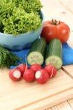fjädergrönsaker Royaltyfria Bilder