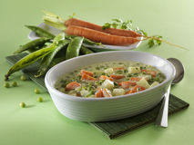 Fjädergrönsakmaträtt Arkivbild