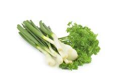 Fjäderlök, parsley Arkivfoto