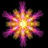 Fjäderlik blom- dekorativ modell Royaltyfri Fotografi