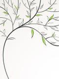 fjädertree stock illustrationer