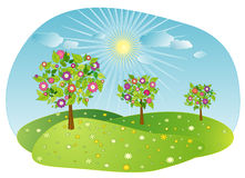 fjädertreesvektor royaltyfri illustrationer