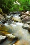 fjädervatten Fotografering för Bildbyråer