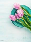Fjädra bakgrund för pastellfärgad färg easter för den purpurfärgade tulpan blom- grön Royaltyfri Foto
