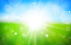 Fjädra bakgrund med solskenrelfex vektor illustrationer