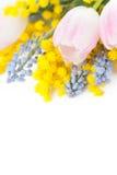 Fjädra blommor Arkivfoton