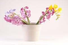 Fjädra blommor i vases Royaltyfria Bilder