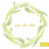 Fjädra blommor, kortet, symbolet, mimosan, krans, 8 Arkivfoto