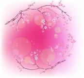Fjädra blomningen vektor illustrationer