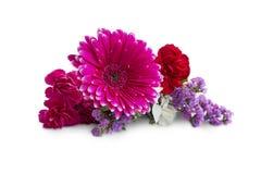 Fjädra buketten med gerbera- och lilablommor som isoleras på vit royaltyfri bild