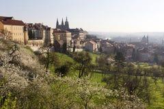 Fjädra den ottaPrague staden med den gotiska slotten i den gröna naturTjeckien Royaltyfri Fotografi