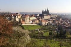 Fjädra den ottaPrague staden med den gotiska slotten i den gröna naturTjeckien Arkivfoto
