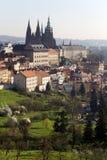 Fjädra den ottaPrague staden med den gotiska slotten i den gröna naturTjeckien Royaltyfria Foton
