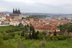 Fjädra den Prague staden med den gotiska slotten och de gröna natur- och blomningträden, Tjeckien Arkivbilder