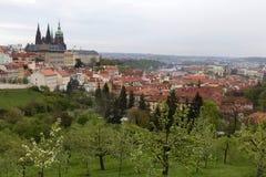 Fjädra den Prague staden med den gotiska slotten och de gröna natur- och blomningträden, Tjeckien Royaltyfria Foton