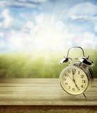 Fjädra den tid… ron lämnar, naturlig bakgrund Arkivbild