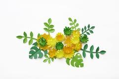 Fjädra den tid… ron lämnar, naturlig bakgrund En delikat ordning av pappers- blommor Färger är guling och gräsplan valentin för d Arkivbild