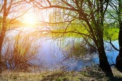 Fjädra det lantliga landskapet - grön pil på banken av den lilla floden Royaltyfri Fotografi