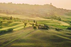 Fjädra fältet runt om Pienza, på vägen Royaltyfri Bild