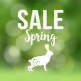 Fjädra försäljningsaffischen med suddig bakgrund, konturn av kanin eller haren och bokehljus, vektorillustration Royaltyfria Foton