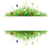 Fjädra grönt gräs med blommor och fjärilar på vit bakgrund Vektor Illustrationer