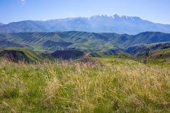 Fjädra i bergen Alma-Ata region kazakhstan Arkivbilder