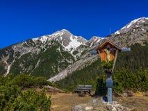 Fjädra i bergen av Tirol, Österrike Royaltyfria Bilder