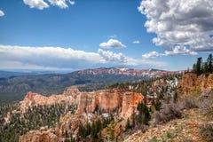 Fjädra i Bryce Canyon National Park som är färdig med snö på jordningen arkivfoto