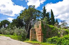Fjädra i Tuscany, en gå parkerar in nära San Gimignano Royaltyfria Foton