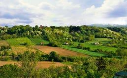 Fjädra landskapet av nationalparken Fruska Gora, Serbien Royaltyfria Foton