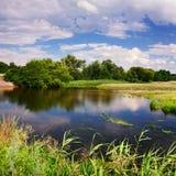 Fjädra på floden Arkivfoton