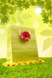 Fjädra shopping hänger lös i gräsplan royaltyfri fotografi
