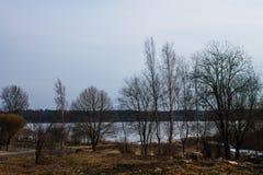 Fjädra sjön som täckas med is i landet Royaltyfria Foton