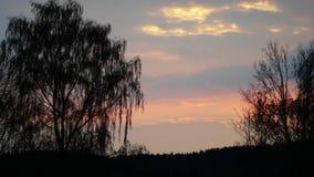 Fjädra solnedgångtimelaps med den dramatiska moln, apelsinfärger och trädkonturn arkivfilmer