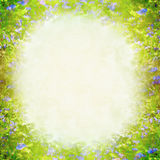 Fjädra suddig bakgrund för sommernaturen med gräsplan- och blåttblommor Arkivbild