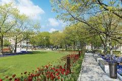 Fjädra trädgården med tulpan som är främsta av den nationella slotten av kultur, Sofia, Bulgarien arkivbild