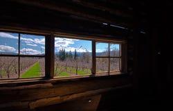 Fjädra utanför fönstret av det gamla huset arkivbilder