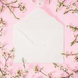 Fjädra vita blommor och det vita kuvertet på rosa bakgrund Lekmanna- lägenhet, bästa sikt Hjärta för två rosa färg Arkivfoto