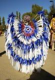 fjädrar 1 ståtar Royaltyfri Foto