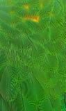 Fjädrar Royaltyfria Bilder