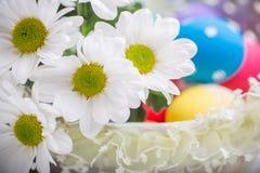 Fjädrar den närvarande korgen för påsken med vita blommor och kulöra ägg på träbakgrund inspiration Royaltyfri Fotografi