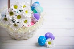 Fjädrar den närvarande korgen för påsken med vita blommor och kulöra ägg på träbakgrund inspiration Royaltyfria Foton
