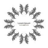 Fjädrar för vektorsvartram med text Royaltyfria Bilder