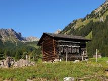 Fjälläng som förlägga i barack i de Raetikon bergen Arkivbilder