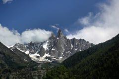 Fjällängar Chamonix Arkivfoto