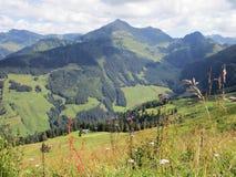 Fjällängarna - sikt av bergmaxima i Österrike royaltyfria foton